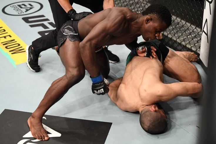 Фил Хоус нокаутировал Джейкоба Малкуна на «Бойцовском острове» UFC, видео