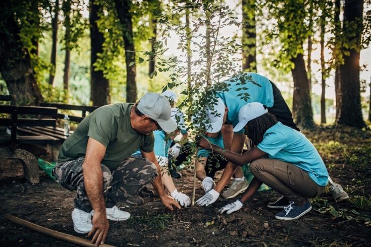 Волонтёрский туризм: куда можно поехать и чем заняться