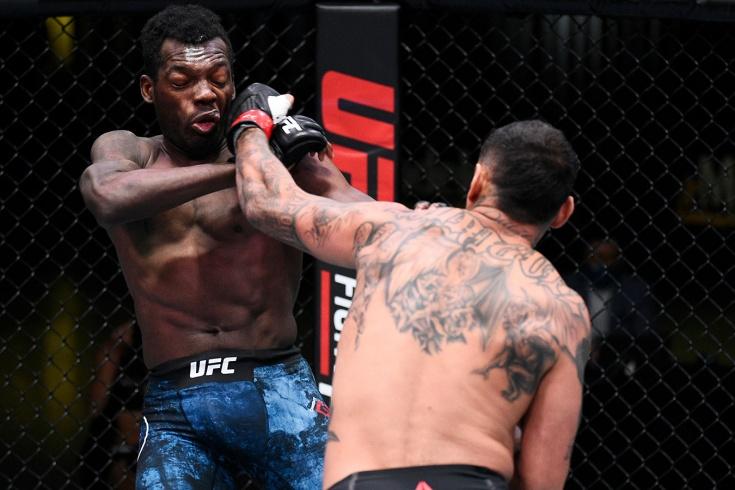 После нокдауна бойца UFC били минуту. Даниэль встал и нокаутировал обидчика. Видео