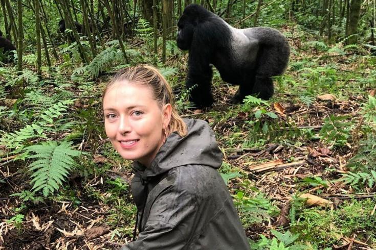 Путешествие Марии Шараповой по Африке – гориллы, гепарды, видео