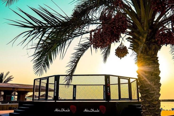 Бойцовский остров UFC