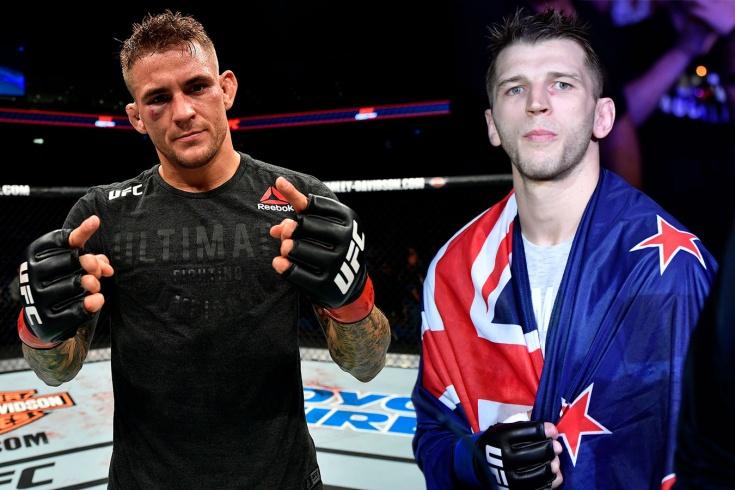 Полный кард UFC Вегас 4 — обзор всех участников турнира
