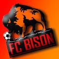 FC BISON