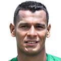 Диего Перальта